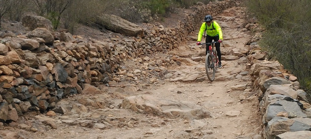 טיולי אופניים בטנריף